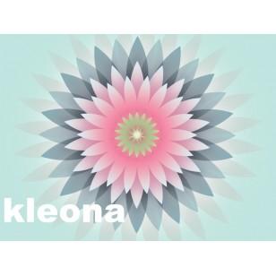 "Kleona純天然花香""Vanilla Sky""沐浴露300ml"