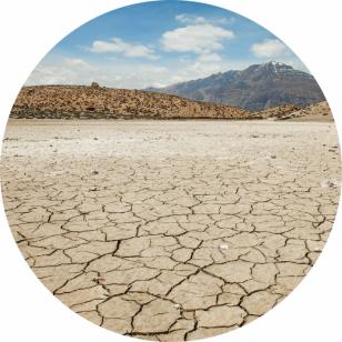 印度Attar Mitti 土壤 5ml